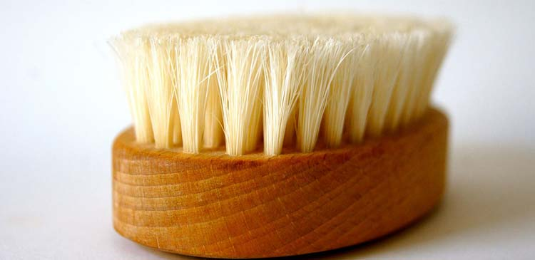 Image Result For Where To Buy A Body Brush For Cellulite