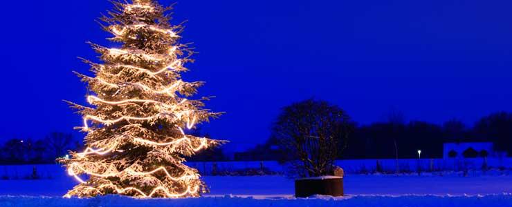 die richtige weihnachtsbeleuchtung f r aussen. Black Bedroom Furniture Sets. Home Design Ideas
